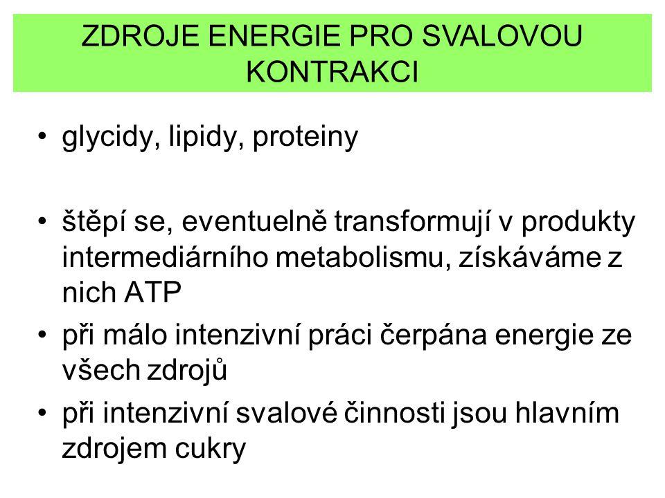 ZDROJE ENERGIE PRO SVALOVOU KONTRAKCI