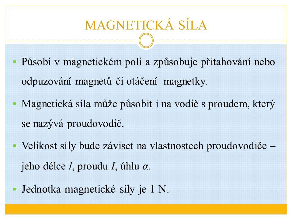 MAGNETICKÁ SÍLA Jednotka magnetické síly je 1 N.