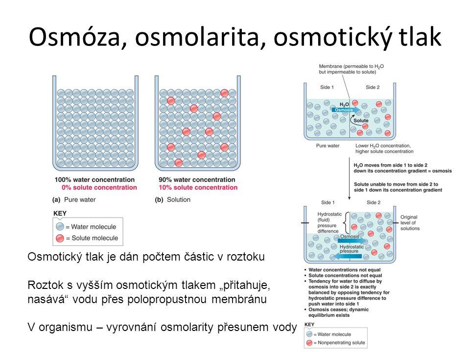Osmóza, osmolarita, osmotický tlak