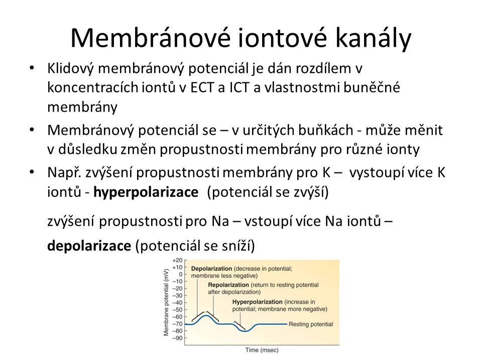 Membránové iontové kanály