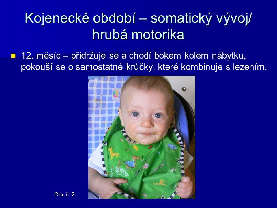 Kojenecké období – somatický vývoj/ hrubá motorika