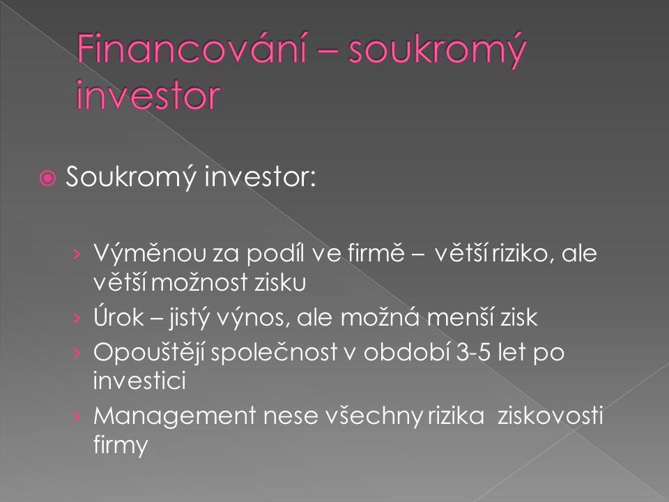 Financování – soukromý investor