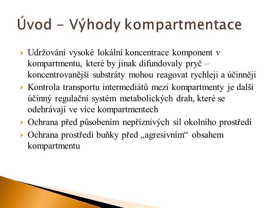 Úvod - Výhody kompartmentace