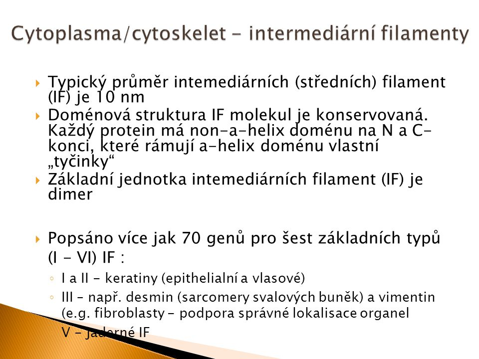 Cytoplasma/cytoskelet - intermediární filamenty