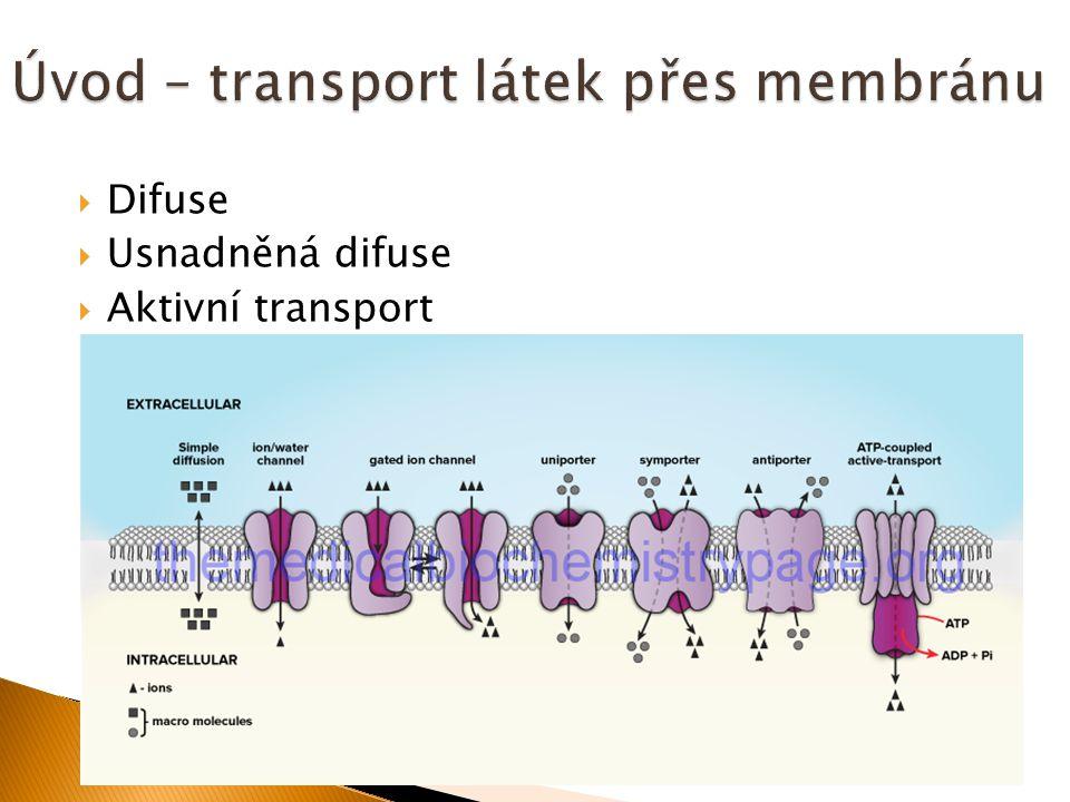 Úvod – transport látek přes membránu