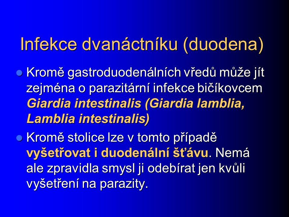 Infekce dvanáctníku (duodena)