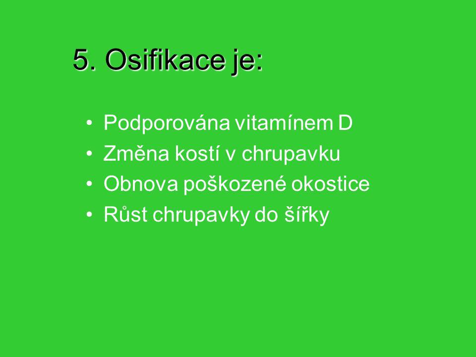 5. Osifikace je: Podporována vitamínem D Změna kostí v chrupavku