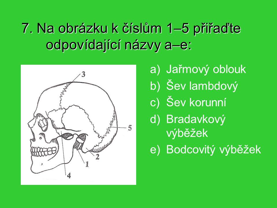 7. Na obrázku k číslům 1–5 přiřaďte odpovídající názvy a–e: