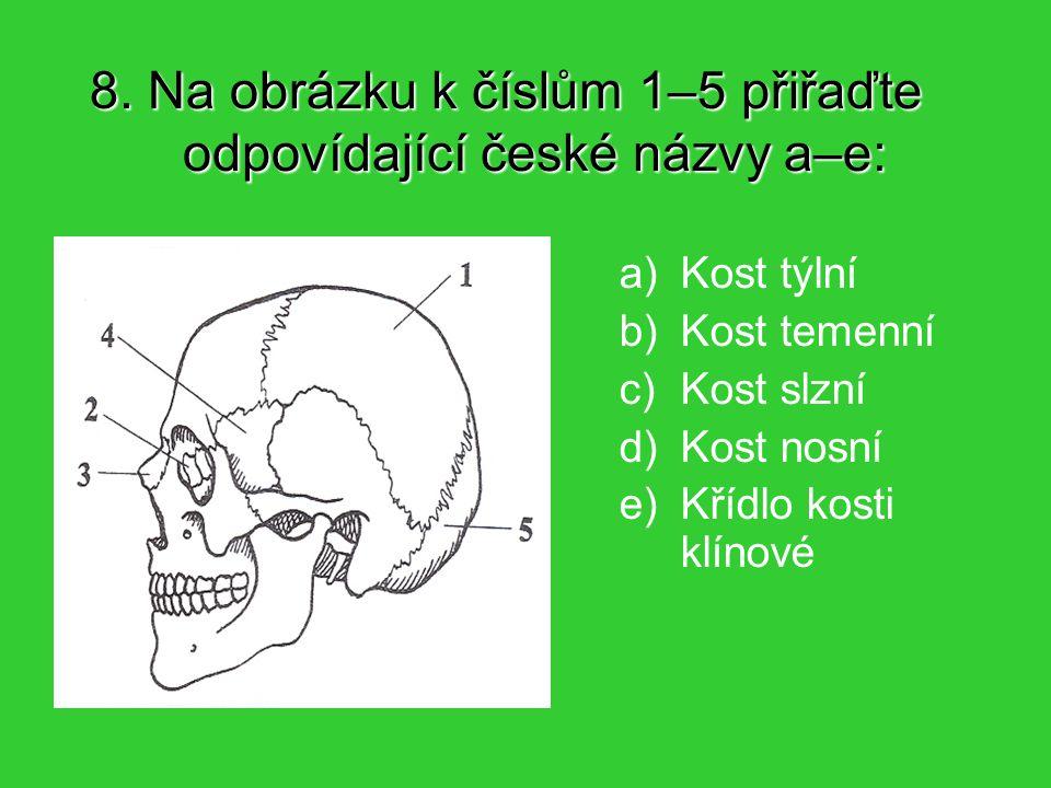 8. Na obrázku k číslům 1–5 přiřaďte odpovídající české názvy a–e: