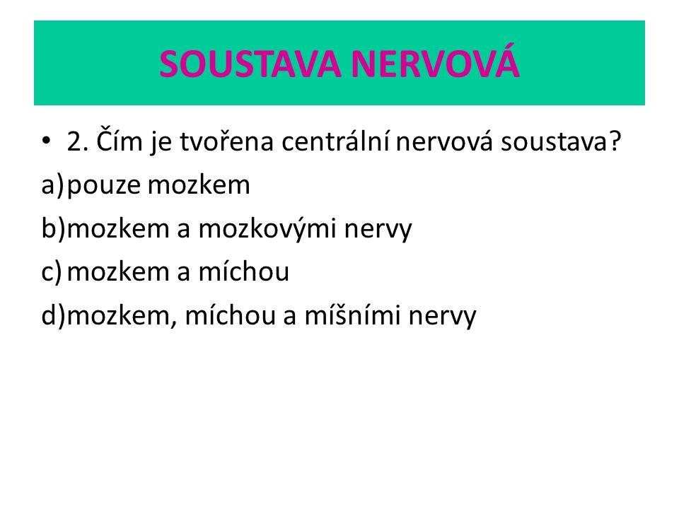 SOUSTAVA NERVOVÁ 2. Čím je tvořena centrální nervová soustava