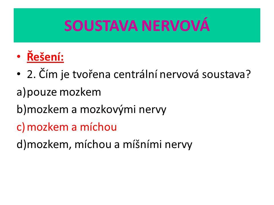 SOUSTAVA NERVOVÁ Řešení: 2. Čím je tvořena centrální nervová soustava