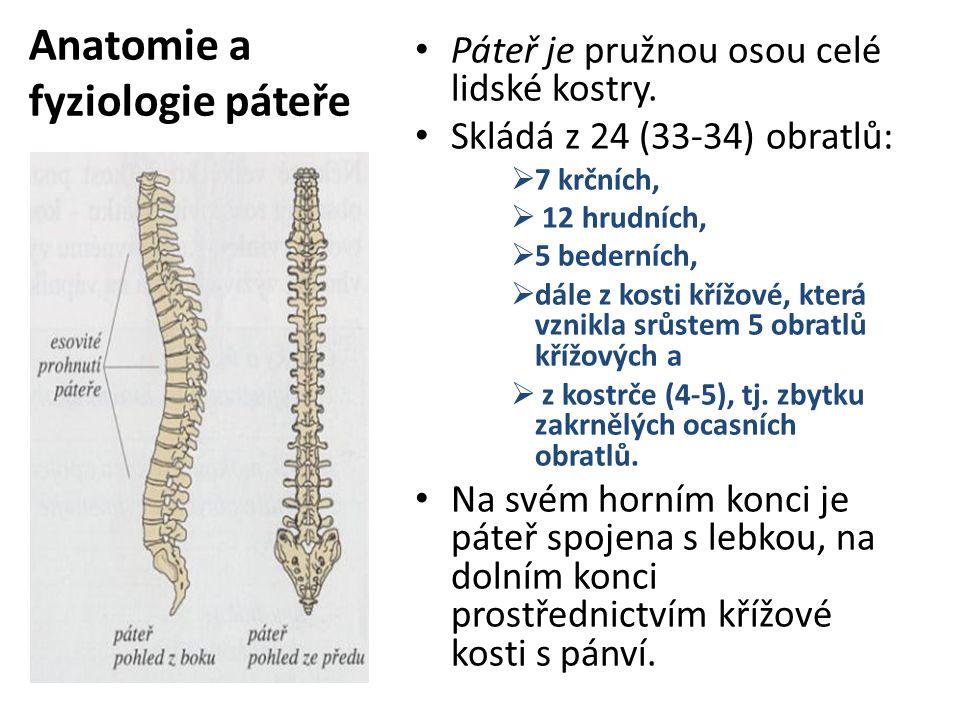 Anatomie a fyziologie páteře
