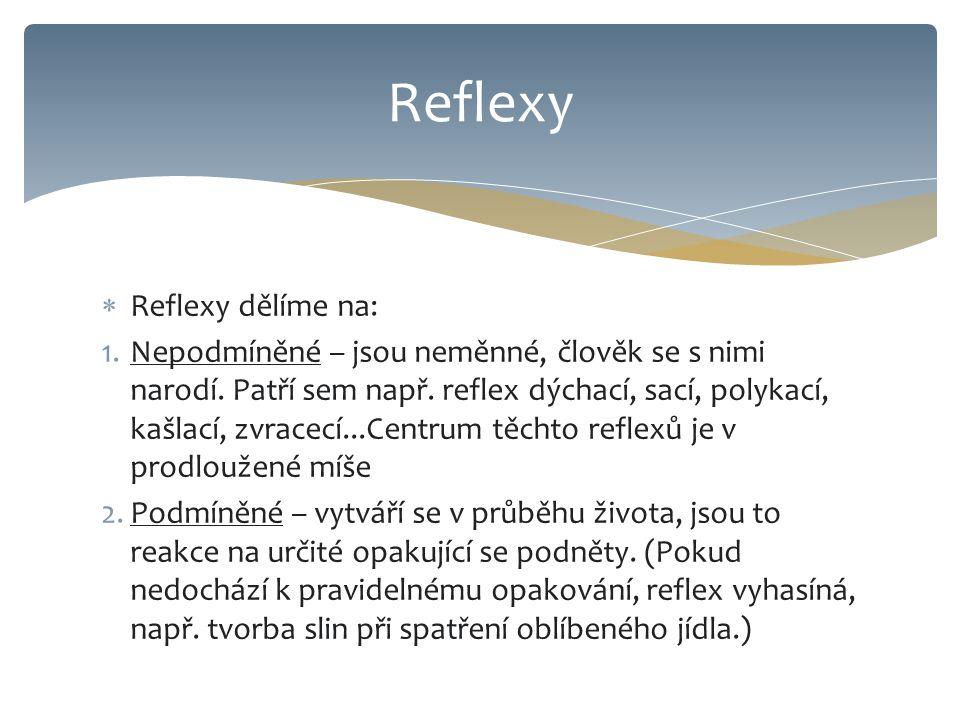 Reflexy Reflexy dělíme na: