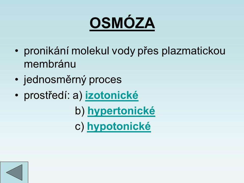 OSMÓZA pronikání molekul vody přes plazmatickou membránu