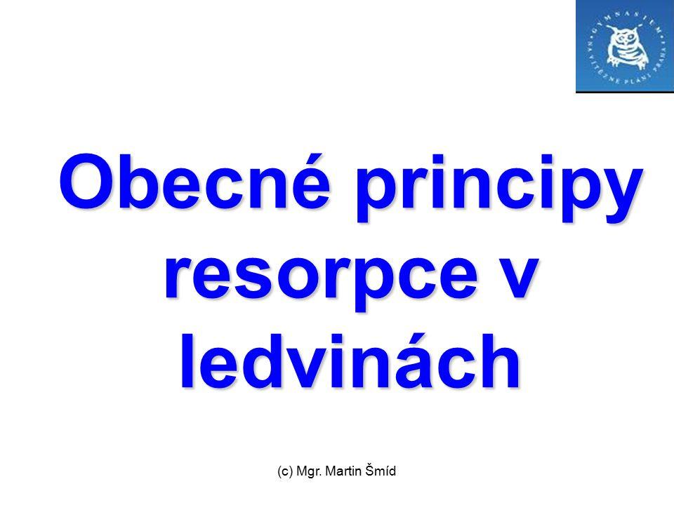 Obecné principy resorpce v ledvinách