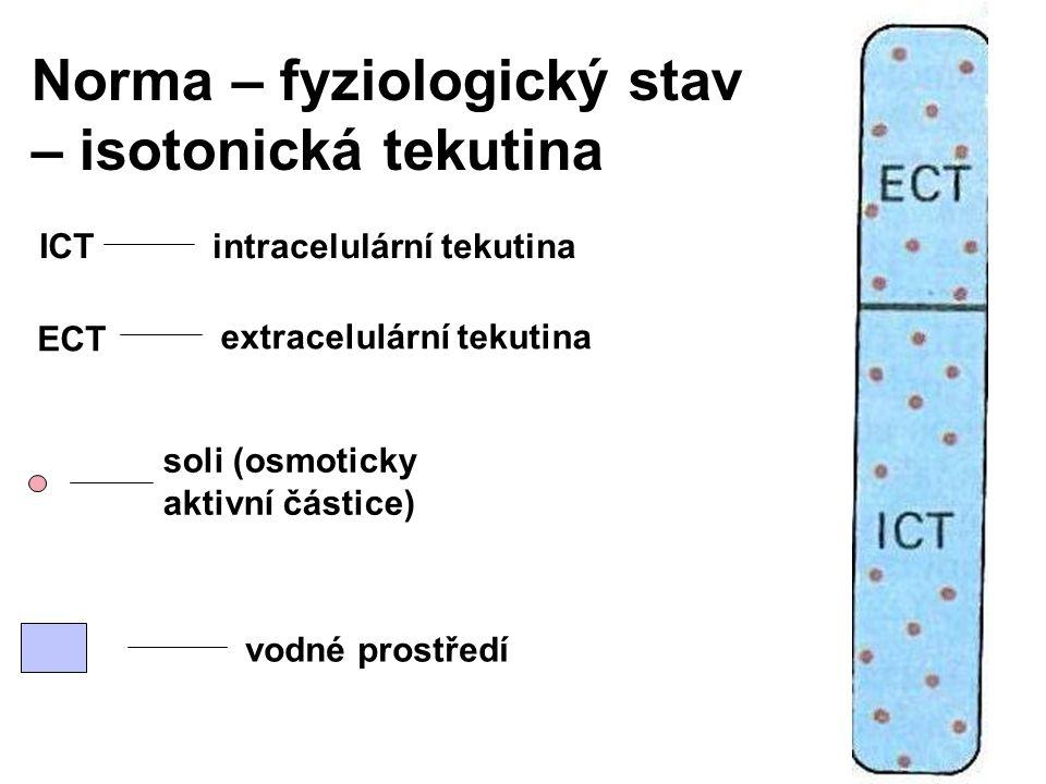 Norma – fyziologický stav – isotonická tekutina