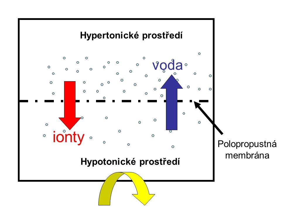 Hypertonické prostředí Hypotonické prostředí