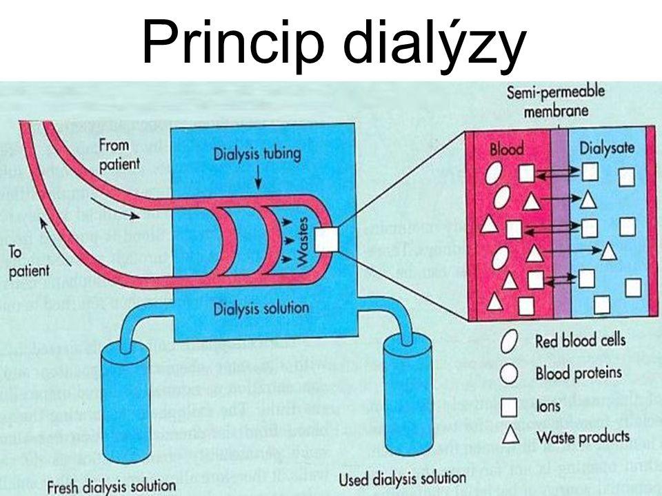 Princip dialýzy