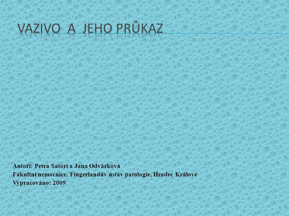 VAZIVO A JEHO PRŮKAZ Autoři: Petra Satori a Jana Odvárková