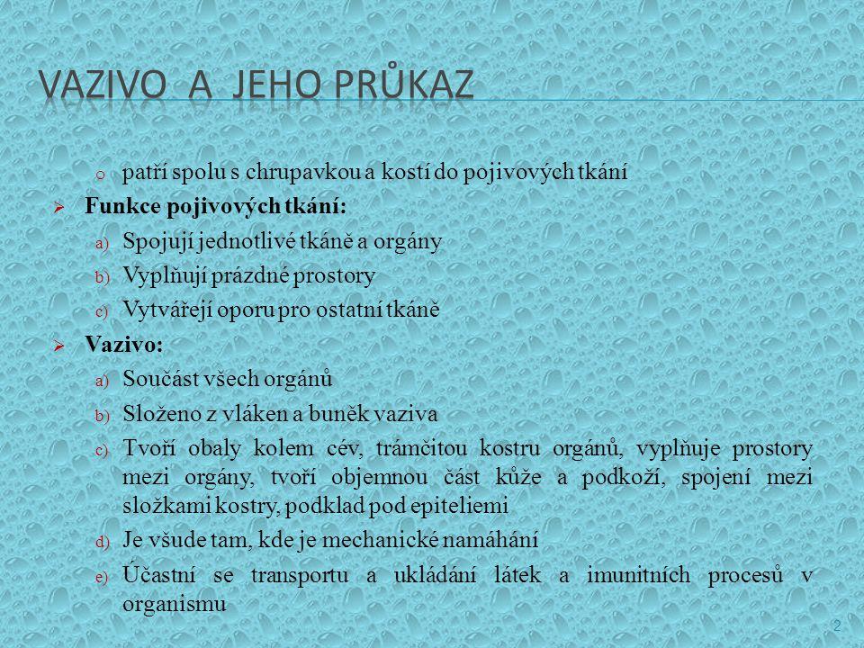 VAZIVO A JEHO PRŮKAZ patří spolu s chrupavkou a kostí do pojivových tkání. Funkce pojivových tkání:
