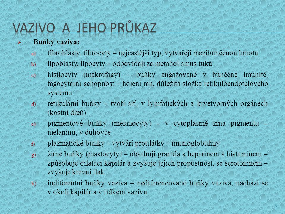 VAZIVO A JEHO PRŮKAZ Buňky vaziva: