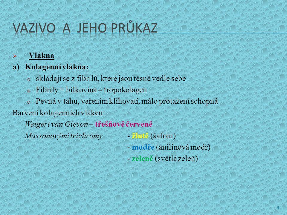 VAZIVO A JEHO PRŮKAZ Vlákna a) Kolagenní vlákna: