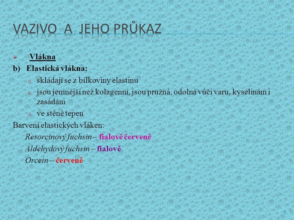 VAZIVO A JEHO PRŮKAZ Vlákna b) Elastická vlákna: