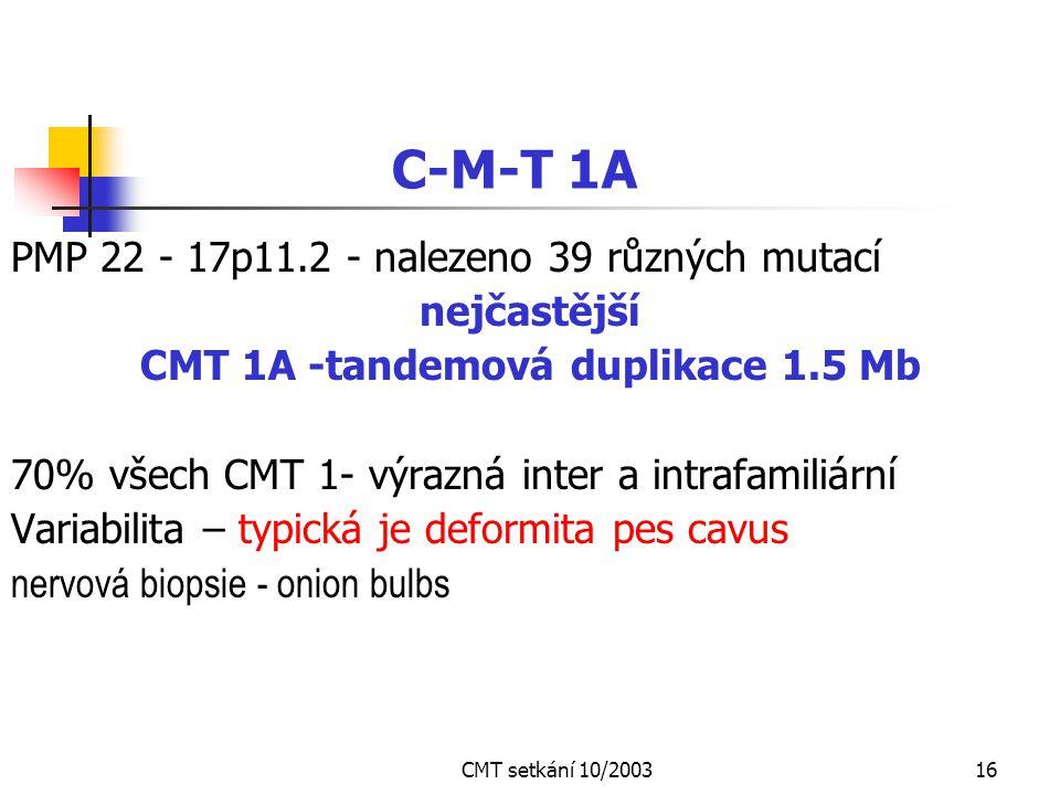 CMT 1A -tandemová duplikace 1.5 Mb