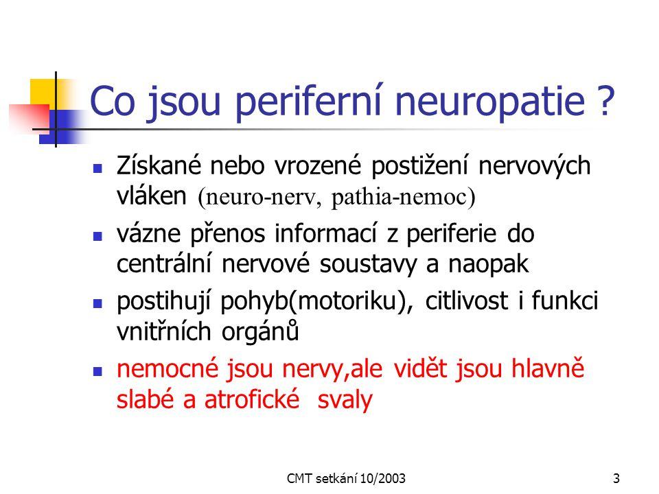 Co jsou periferní neuropatie