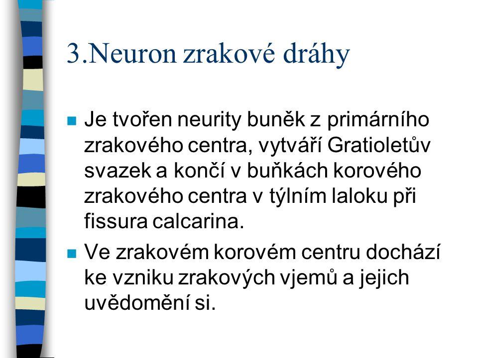 Ppt Stáhnout Beste - REV