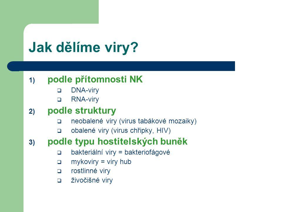Jak dělíme viry podle přítomnosti NK podle struktury