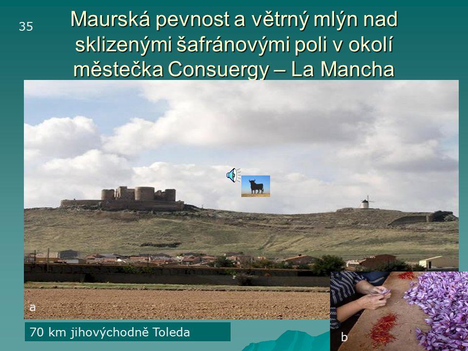 35 Maurská pevnost a větrný mlýn nad sklizenými šafránovými poli v okolí městečka Consuergy – La Mancha.