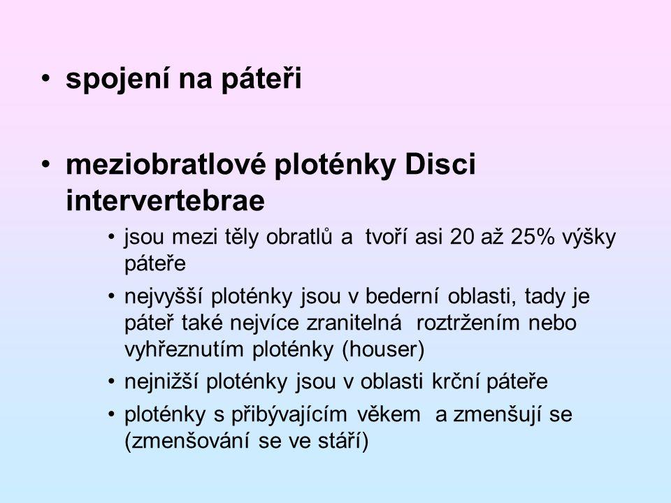 meziobratlové ploténky Disci intervertebrae