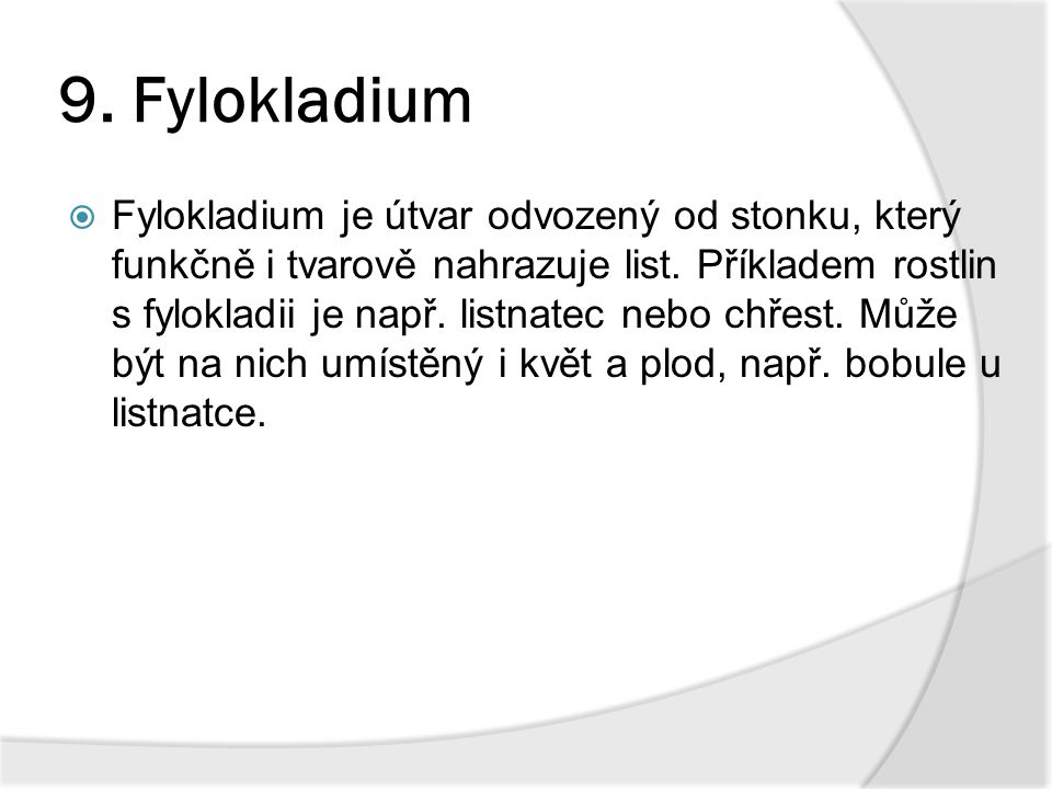 9. Fylokladium