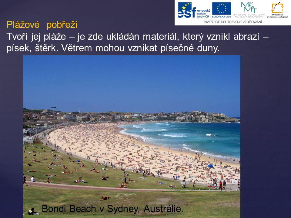 Plážové pobřeží Tvoří jej pláže – je zde ukládán materiál, který vznikl abrazí – písek, štěrk. Větrem mohou vznikat písečné duny.
