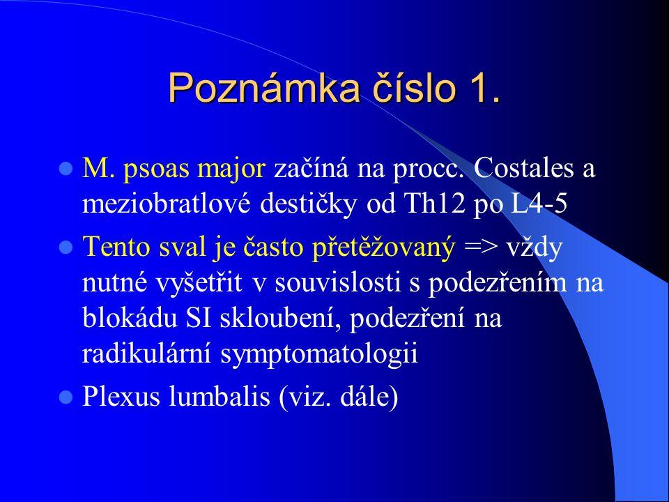 Poznámka číslo 1. M. psoas major začíná na procc. Costales a meziobratlové destičky od Th12 po L4-5.