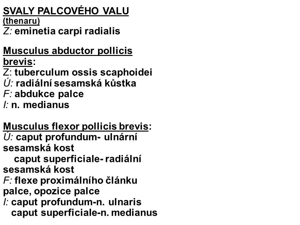 SVALY PALCOVÉHO VALU (thenaru)