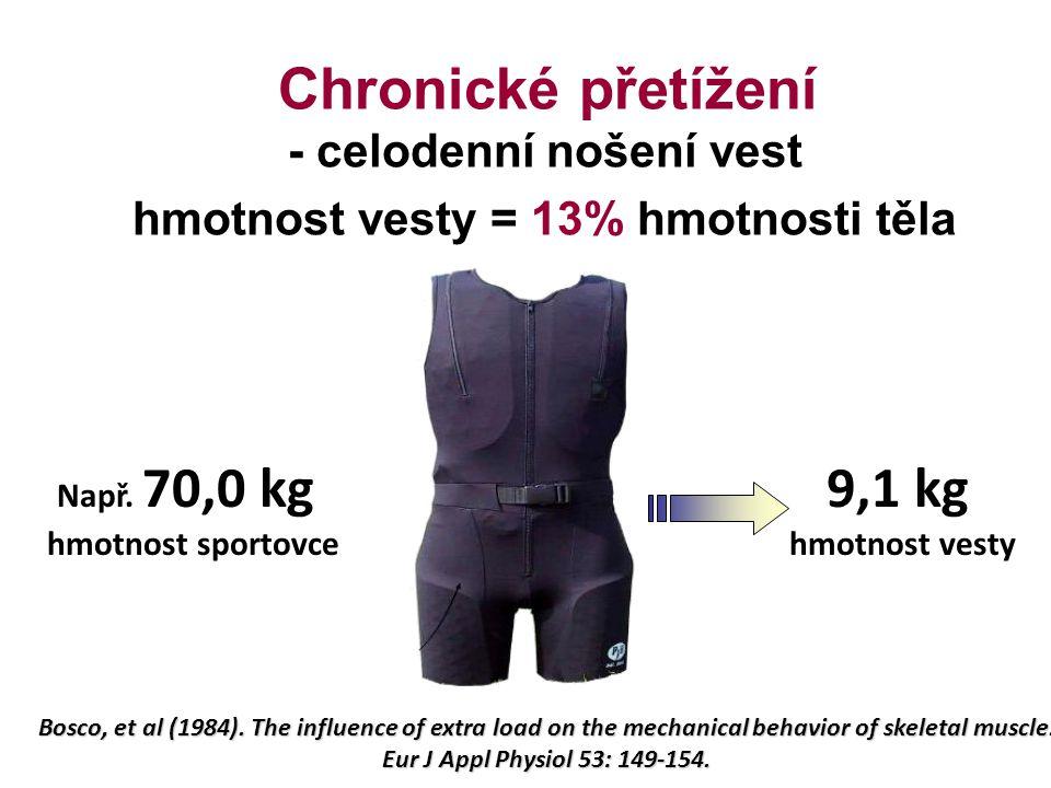 9,1 kg Chronické přetížení - celodenní nošení vest