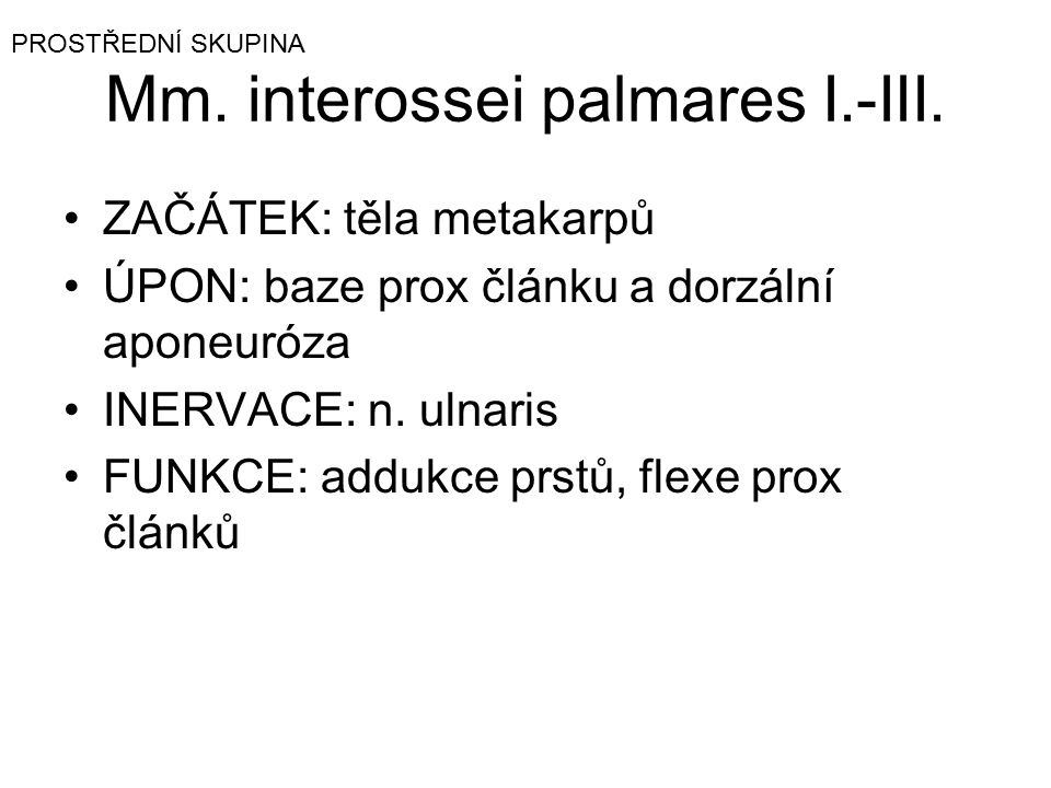 Mm. interossei palmares I.-III.