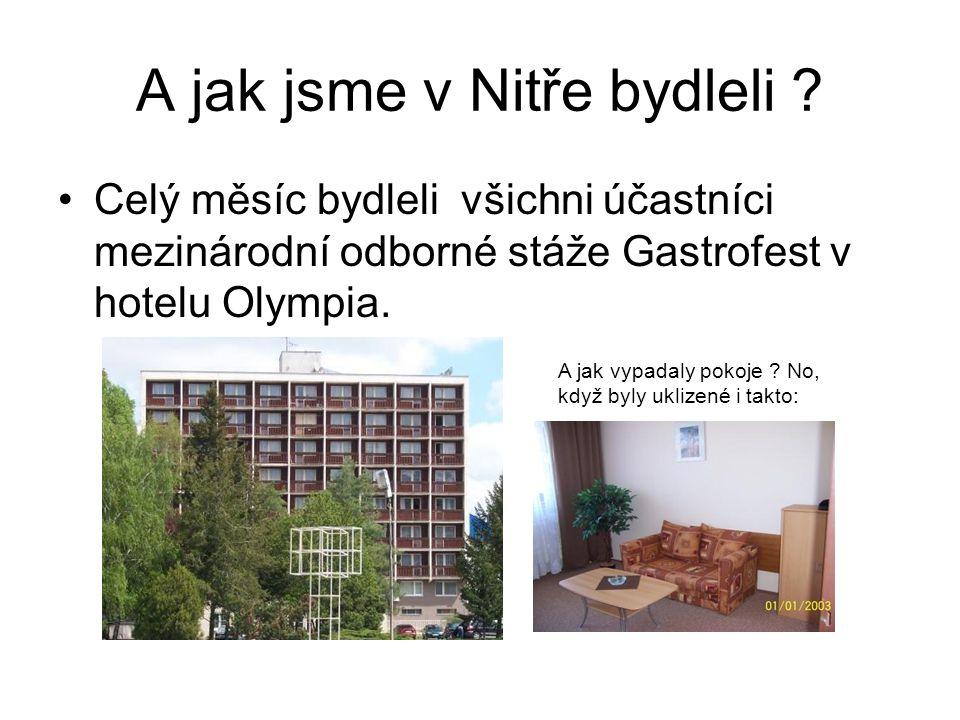 A jak jsme v Nitře bydleli