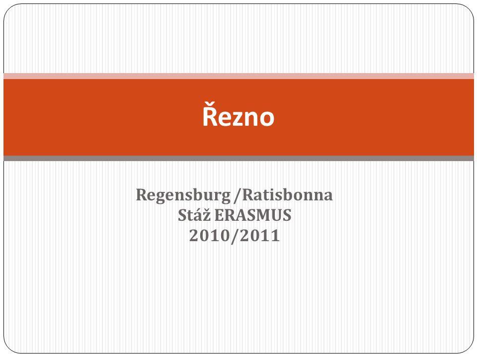 Regensburg /Ratisbonna Stáž ERASMUS 2010/2011