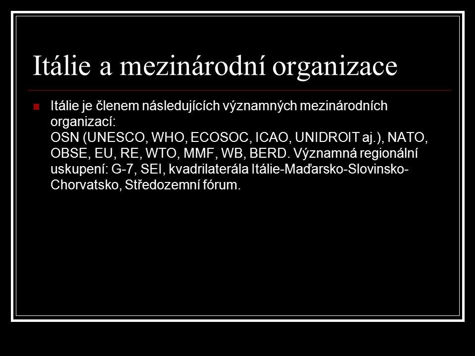 Itálie a mezinárodní organizace