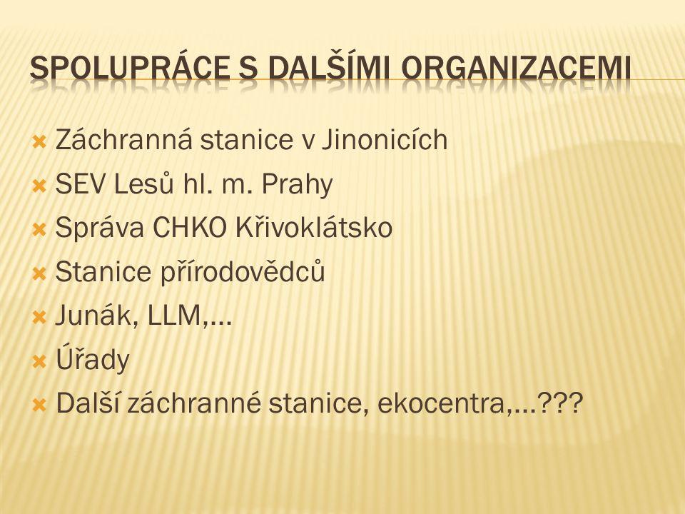 Spolupráce s dalšími organizacemi