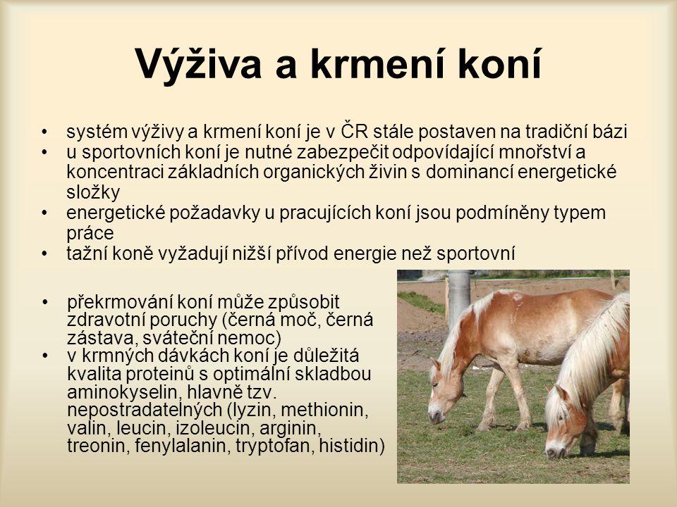 Výživa a krmení koní systém výživy a krmení koní je v ČR stále postaven na tradiční bázi.