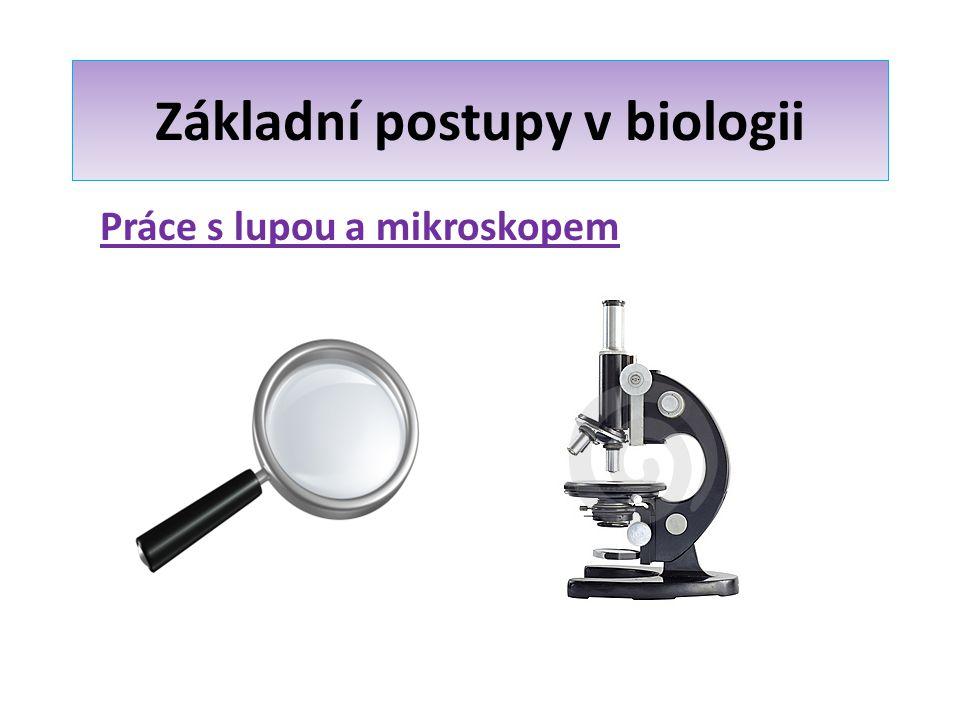 Základní postupy v biologii