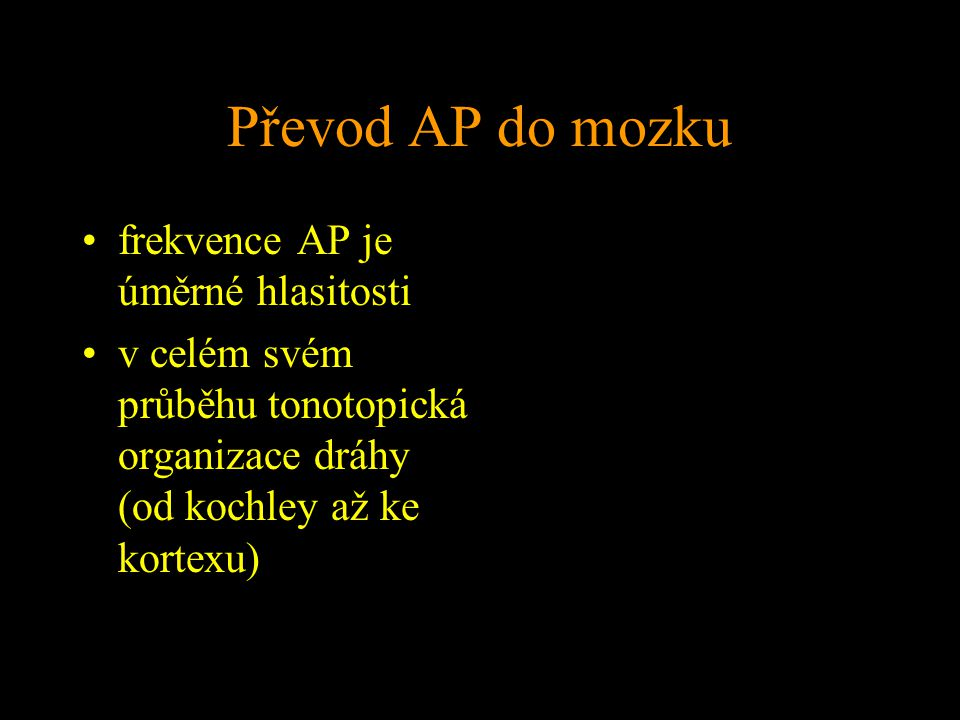 Převod AP do mozku frekvence AP je úměrné hlasitosti