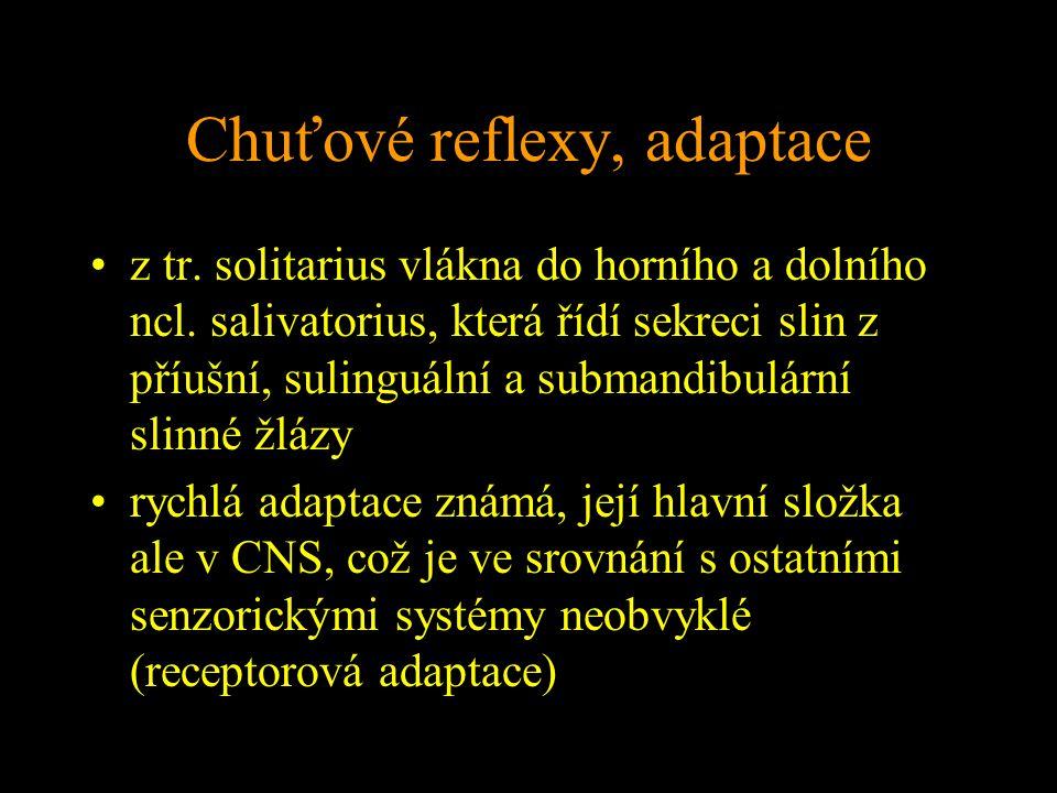 Chuťové reflexy, adaptace