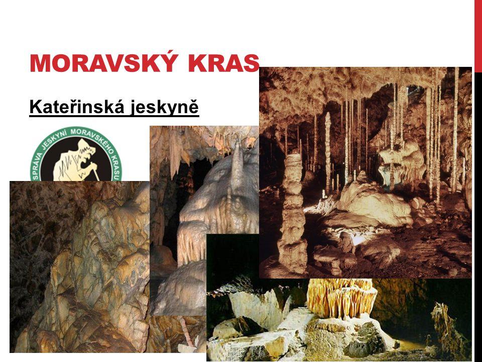 MORAVSKÝ KRAS Kateřinská jeskyně