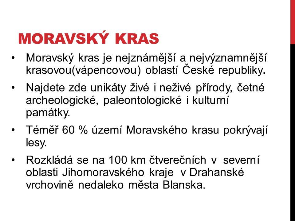 MORAVSKÝ KRAS Moravský kras je nejznámější a nejvýznamnější krasovou(vápencovou) oblastí České republiky.