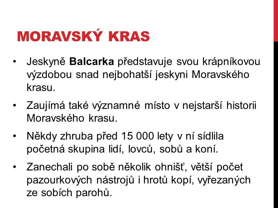 MORAVSKÝ KRAS Jeskyně Balcarka představuje svou krápníkovou výzdobou snad nejbohatší jeskyni Moravského krasu.
